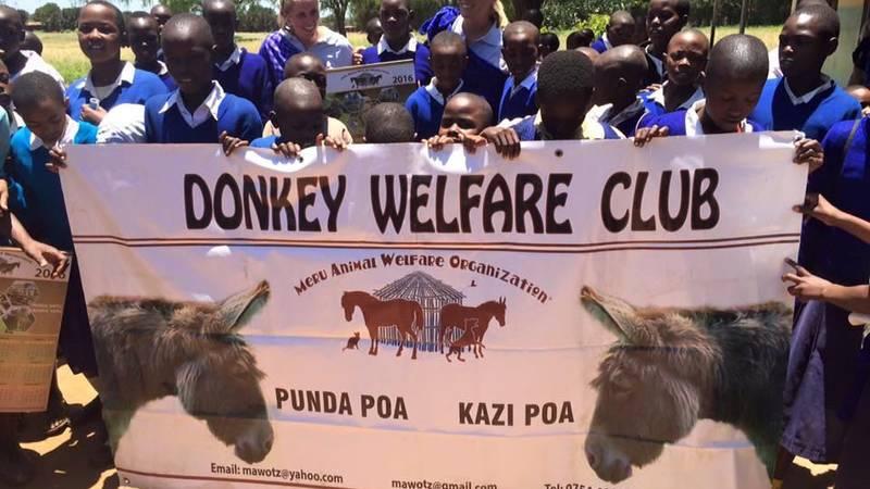 Support the work of an Animal Welfare Organization