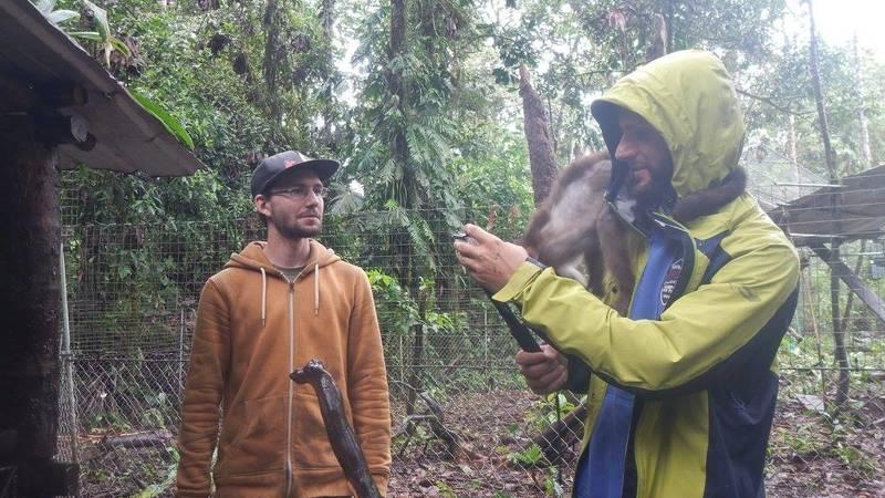 Wildlife Rescue & Animal Caretaker