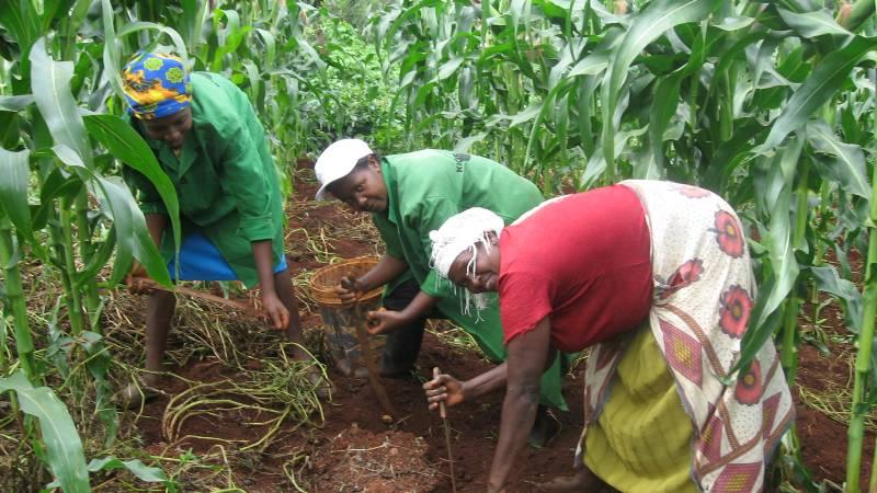 learning new tech in farming