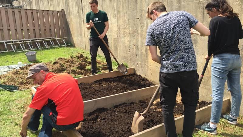 Volunteers work in community garden