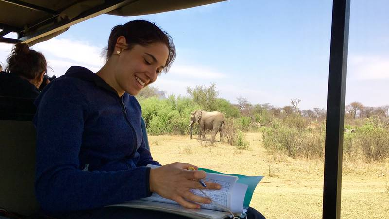 Lion, Rhino Monitoring and Wildlife Conservation