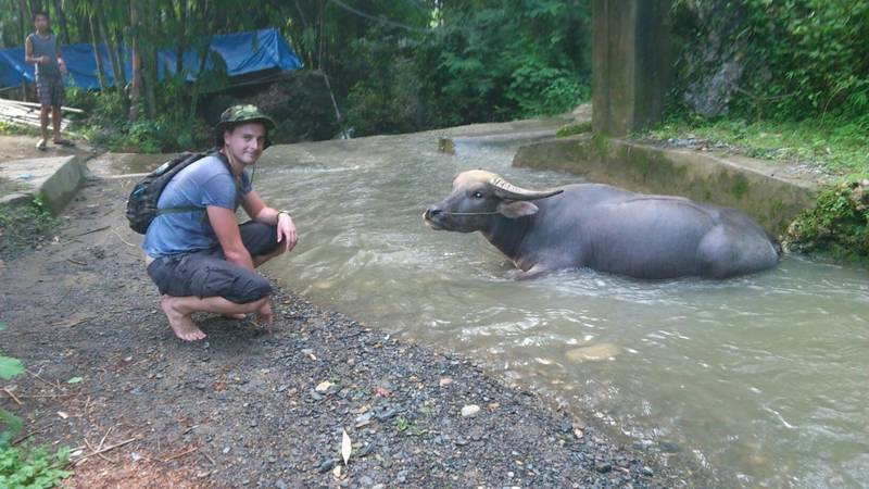 Petre with water buffalo