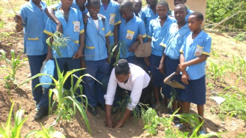 Demonstrating tree planting to students