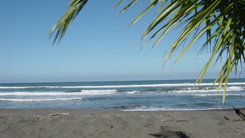 the beautiful Pacuare beach