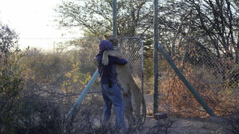 Wildlife Protector