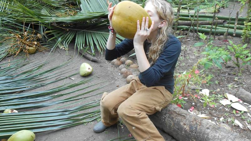 ever drink right from a coconut?
