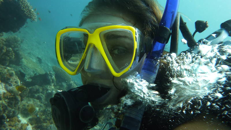 Marine Conservation Supporter and Diving