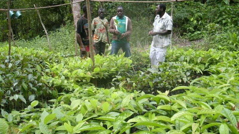 Conservation Education Volunteer