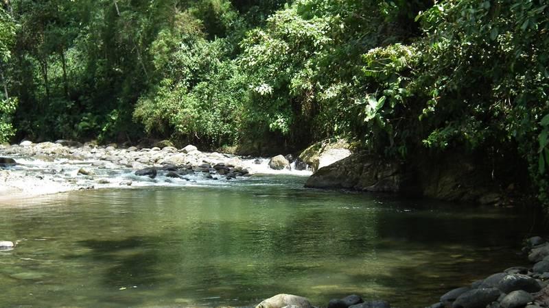 River Pachijal
