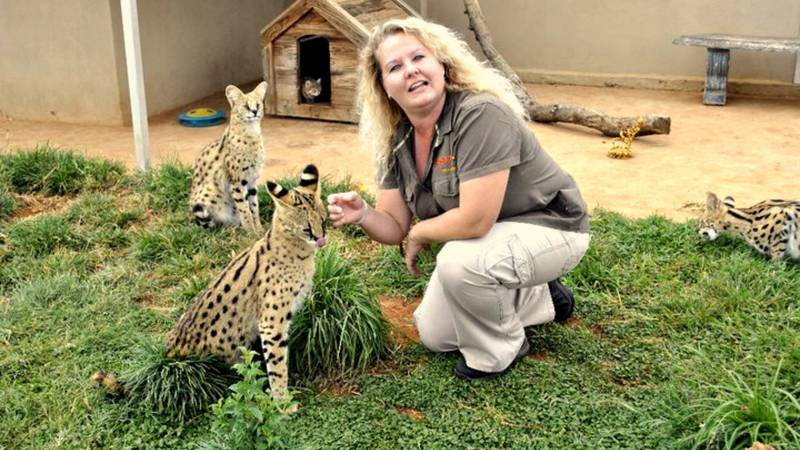 Lizette the owner and serval cubs