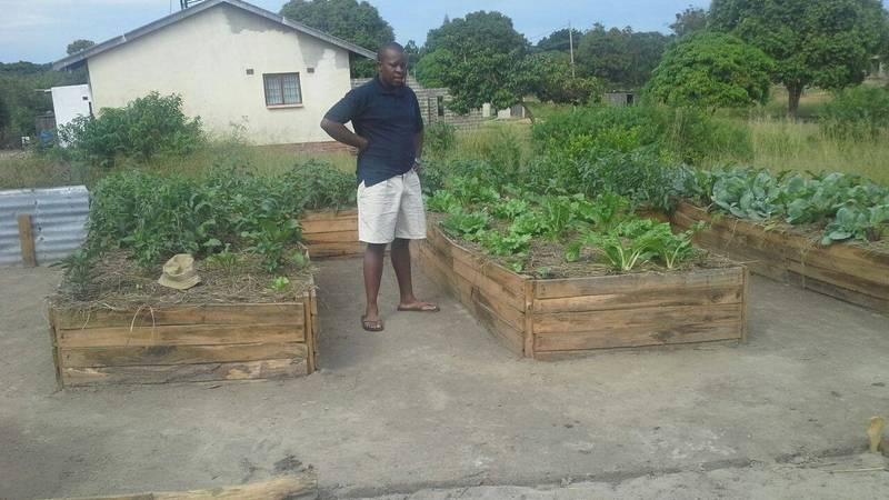 Rainwater Harvesting & Food Security