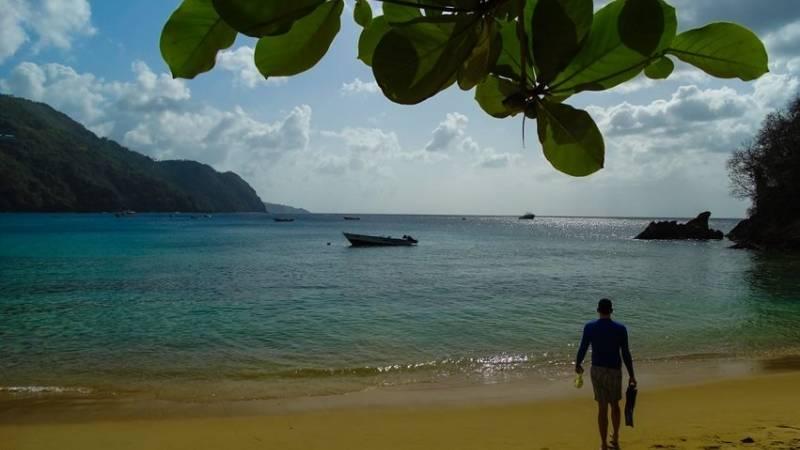 Enjoy Tobago, the Caribbean's eco-tourism hotspo