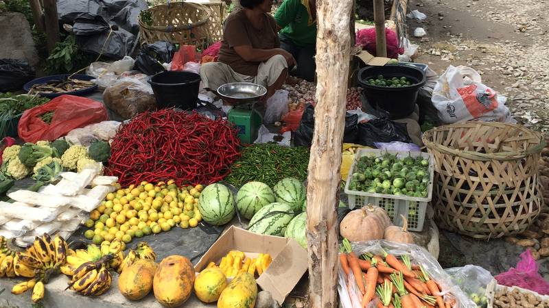A trip to the local market