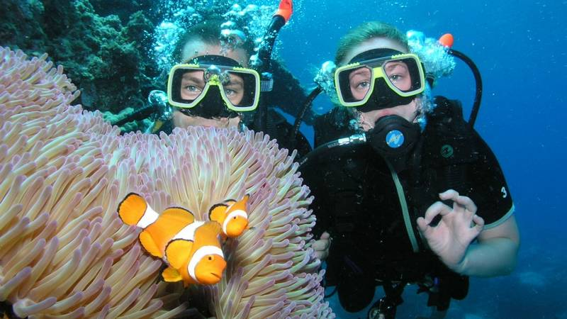 Great Barrier Reef Conservation