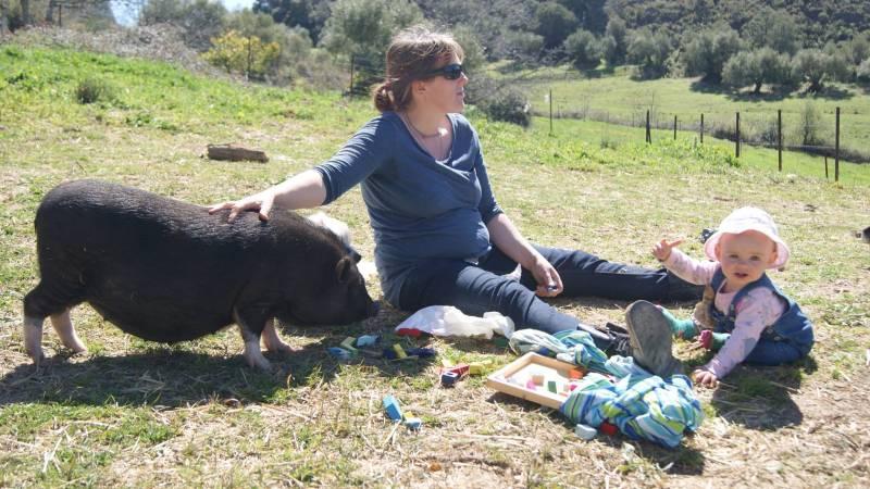 Picnics with our pig Dana