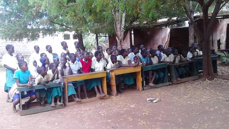 Seedlings school in Malindi