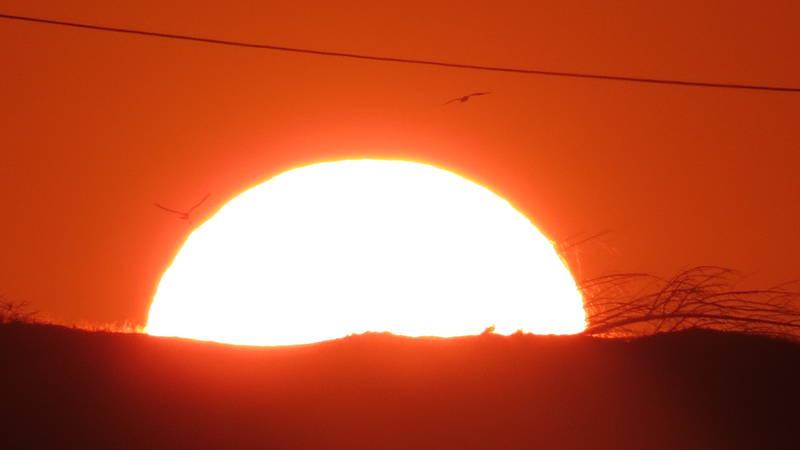Los Organos Sunsets
