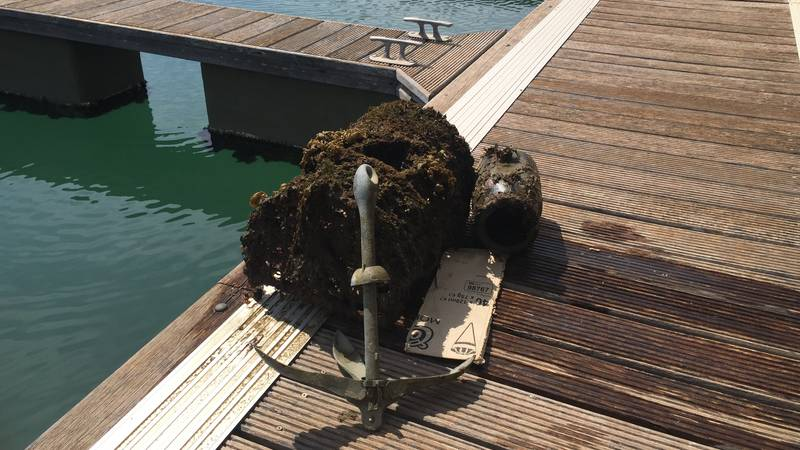 Environmental Scuba Diver