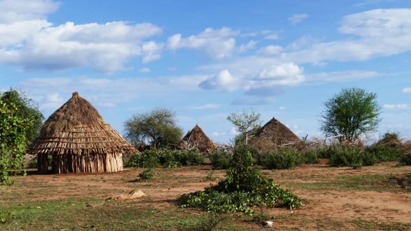 Typical Hamar village
