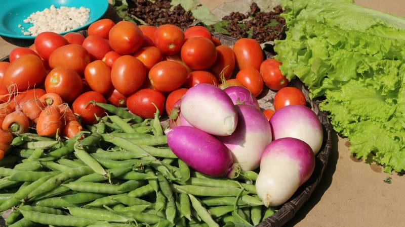 Veggies at the farm stand
