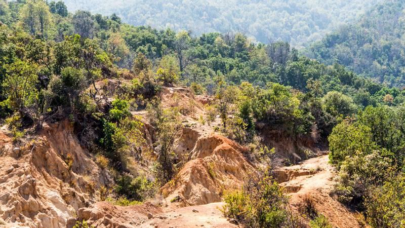 Park view erosion