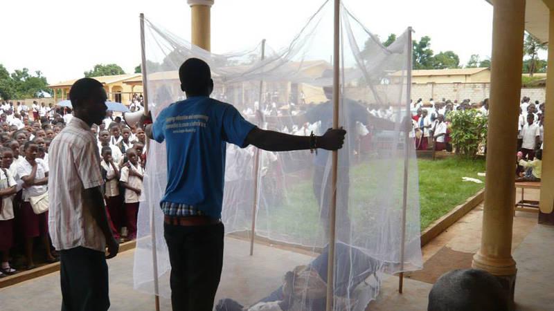 Malaria Free Campaign Supporter
