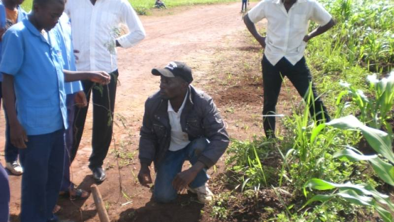 Demonstrating Tree planting to student