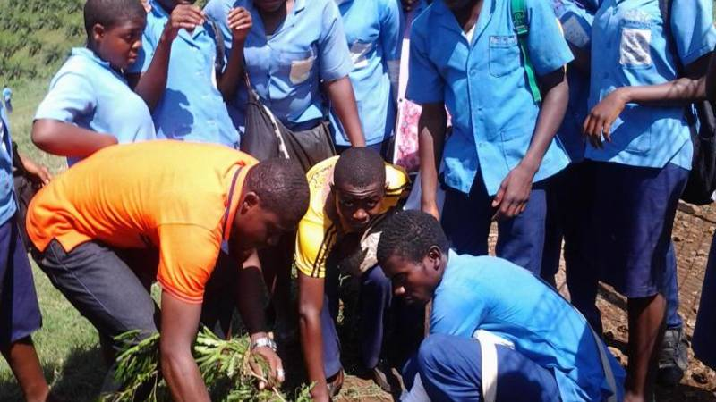 Global Youth Service Day Celebration with trees