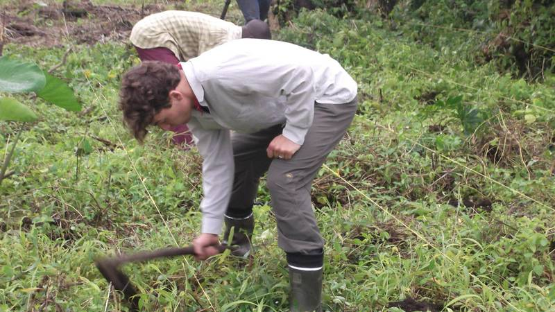 Organic farming exercise