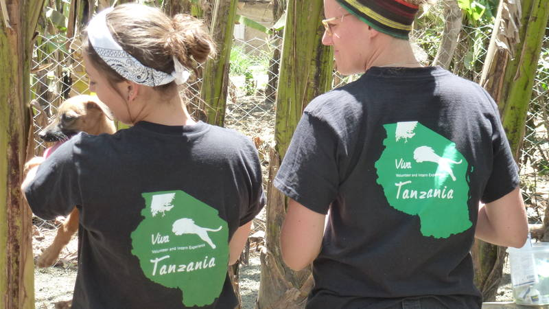 Viva Tanzania Volunteers in action
