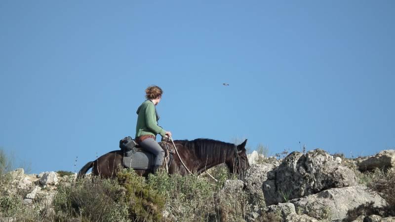 Eagle-spotting