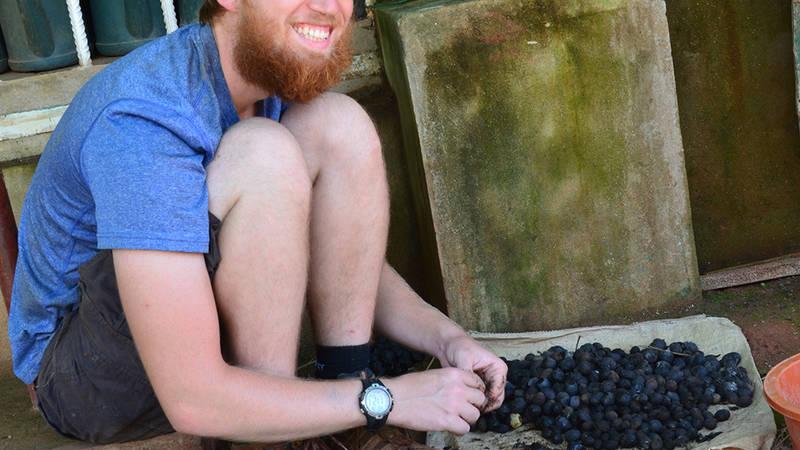 Trevor sorting large seeds