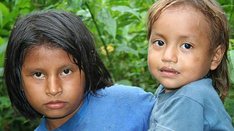 Indigenous Community Assistant