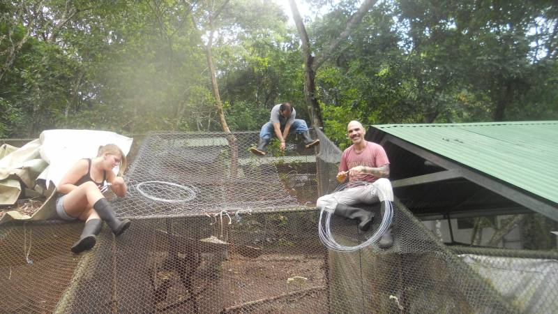 volunteers fix a wildlife enclosure
