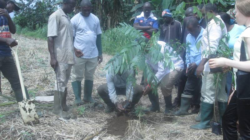 Support water catchment rehabilitation