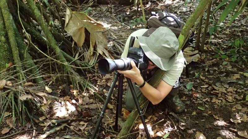 Jaguar Conservation and Research