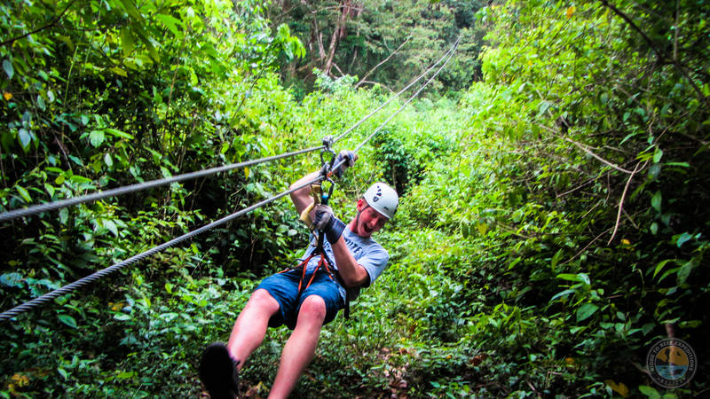 Traverse through jungle treetops