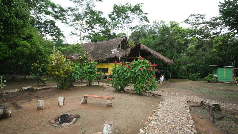 Amazon Accommodation