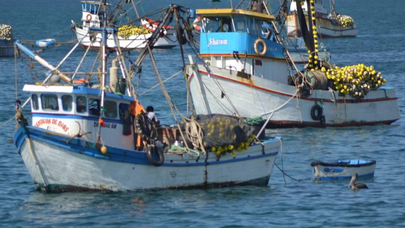 Artisanal Boats