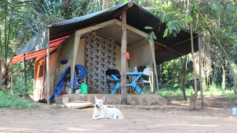 Our Accommodation in Safari Tents