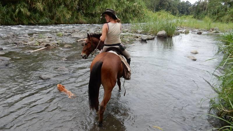 Natural Horsemanship Holiday