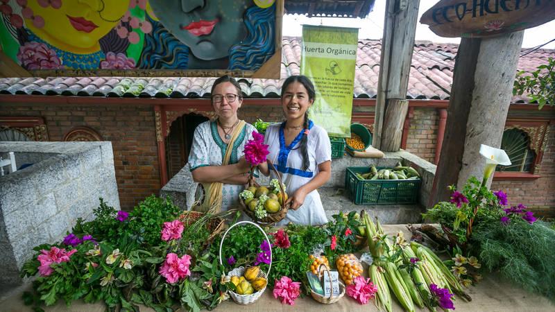 Organic sell at Varsana