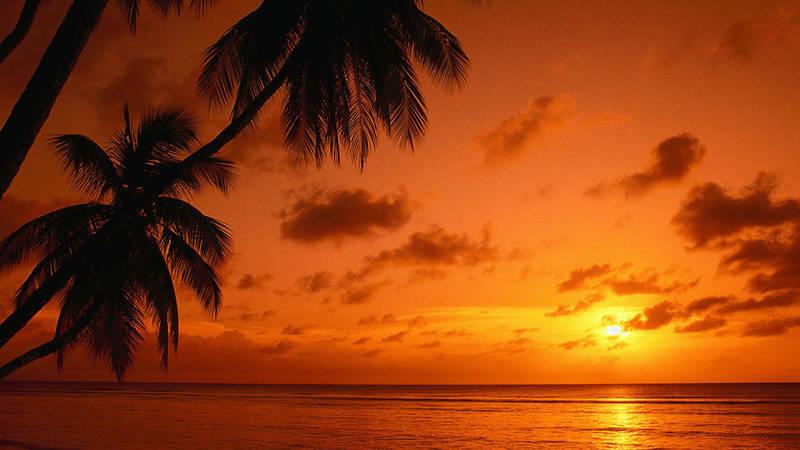 Sunset ReefCI