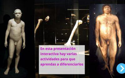 Homínidos de Atapuerca: ¿Antecessor o Heidelbergensis?