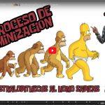 El proceso de hominización. Del Australopitecus al Homo Sapiens