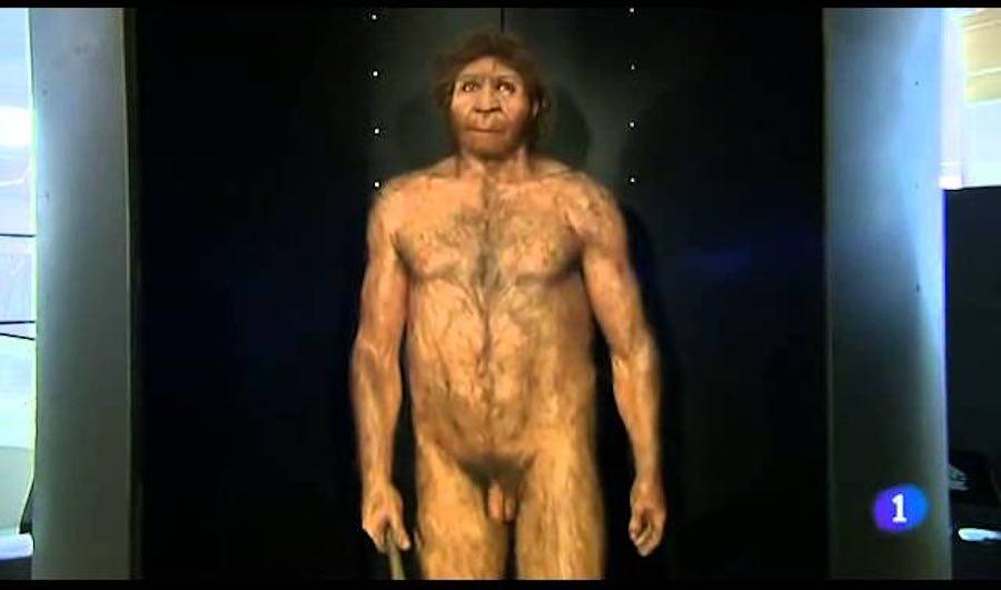 prehistoria atapuerca