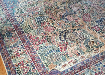 beautiful area rug.png