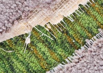bigstock-Old-Carpet-Detail-40135207.jpg