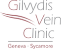 Gilvydis_Logo.png