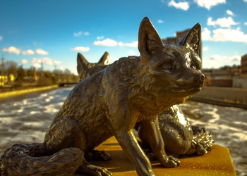 bigstock-Closeup-Of-Monument-Of-Foxes-O-237319114.jpg
